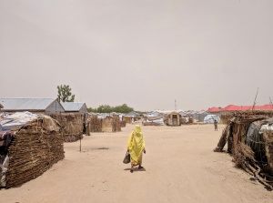 Comprehension matters: Reaching vulnerable women in northeast Nigeria